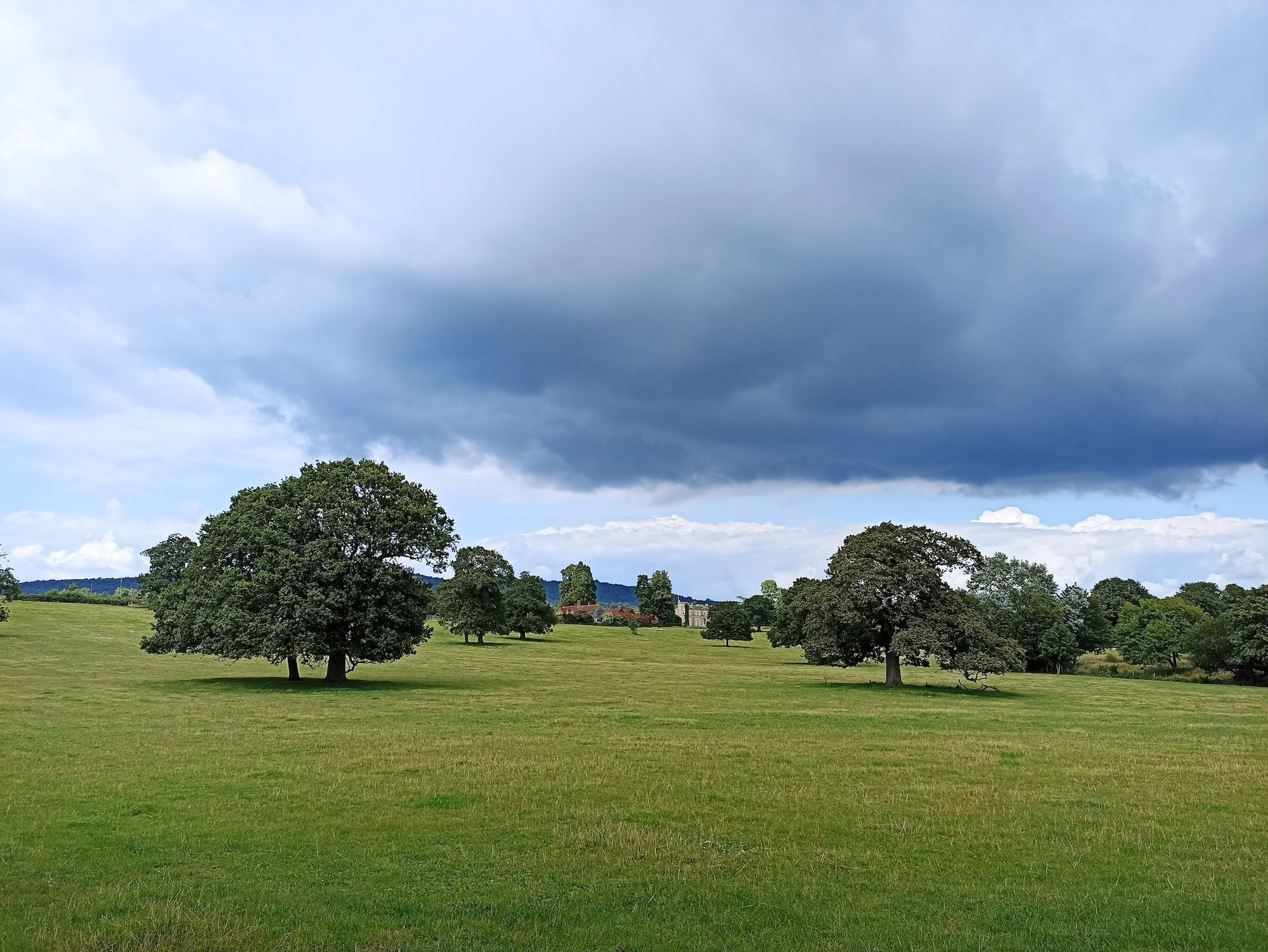 Clouds and tree photo taken with the Xiaomi Redmi Note 10S.