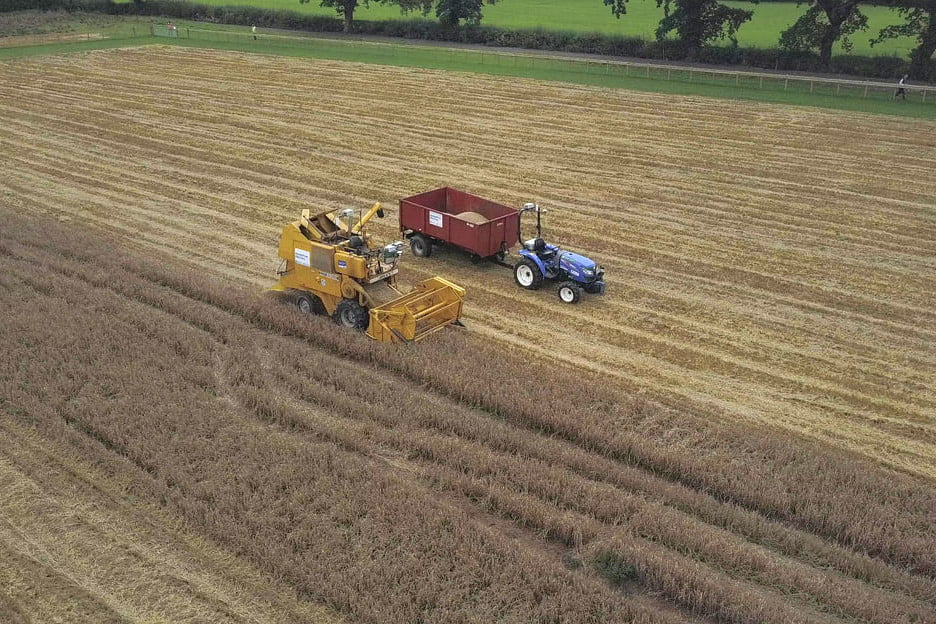 Robot Farmers Harvest Barley Hands Free Hectare