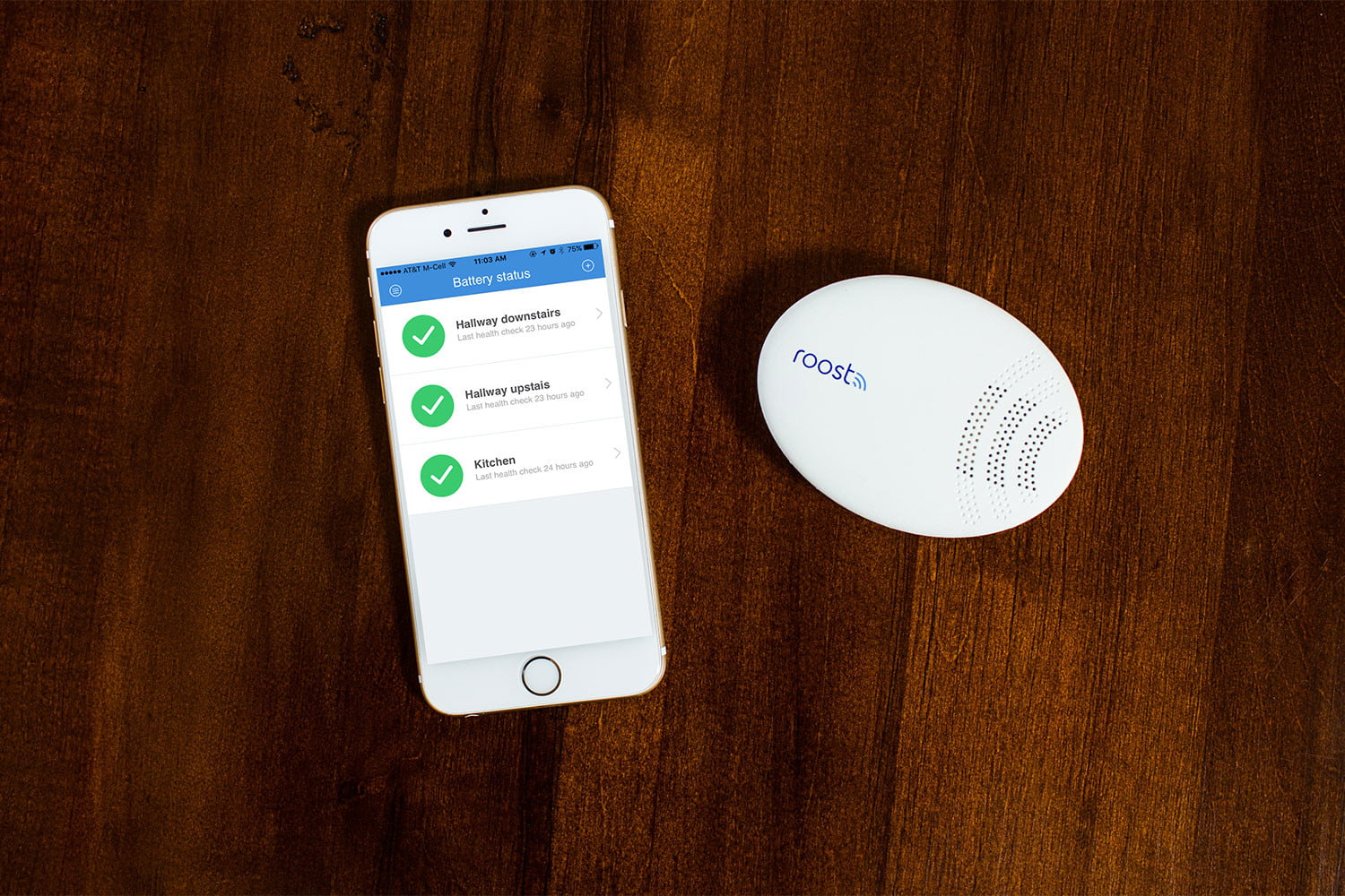Roost Smart Water and Freeze Detector