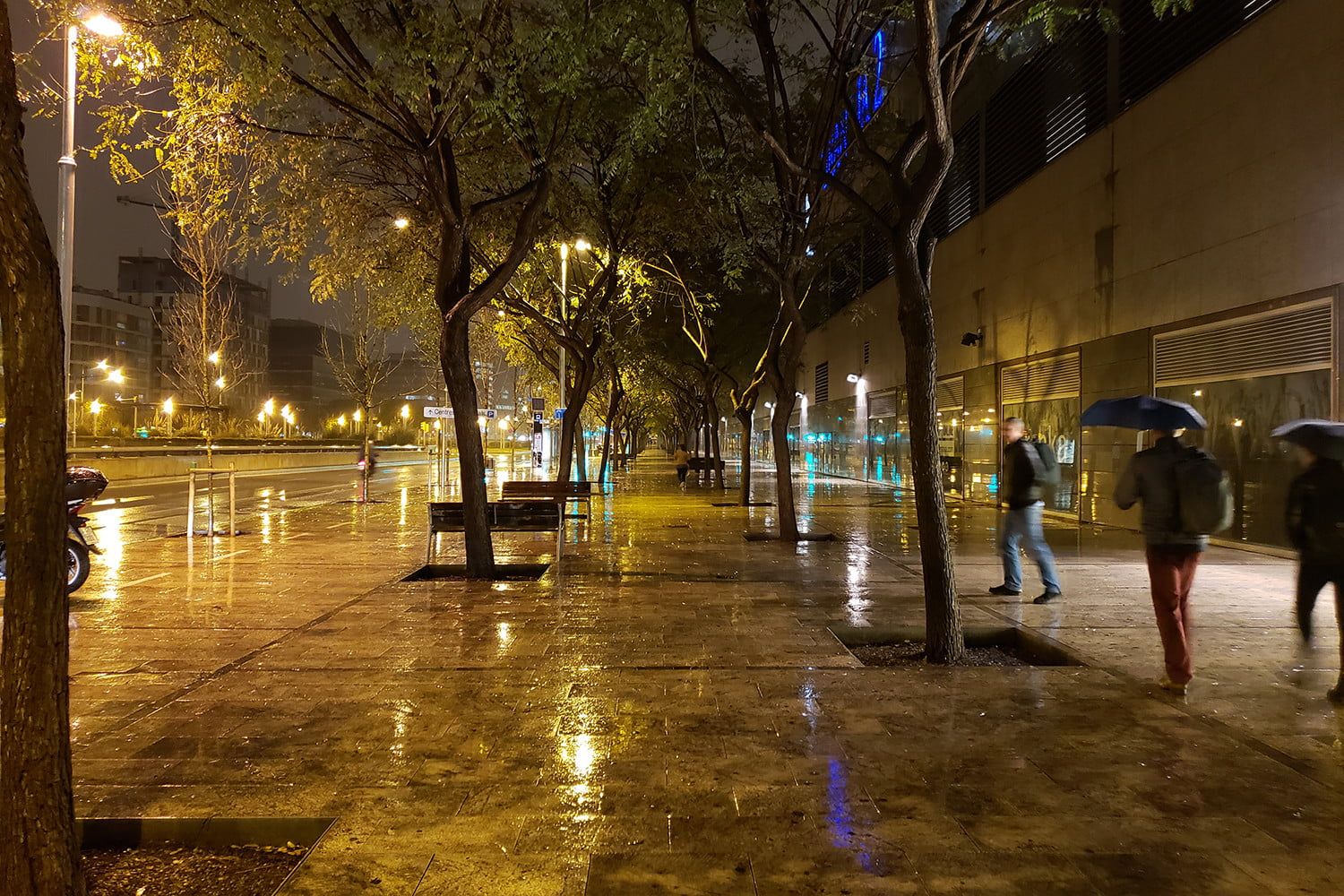 samsung galaxy s9 plus review camera samples rain and trees