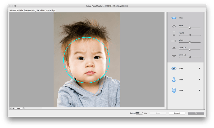 adobe photoshop elements 15 premiere released screen shot 2016 09 29 at 11 38 40 am