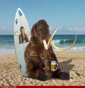 surfer-mammoth-with-beer