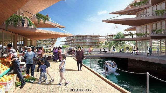 this floating city concept could withstand a category 5 hurricane the also contain an aquifer system that pulls clean water o