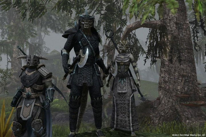 The Elder Scrolls Online group of players.