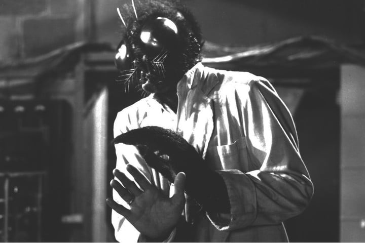 the fly remake 1958