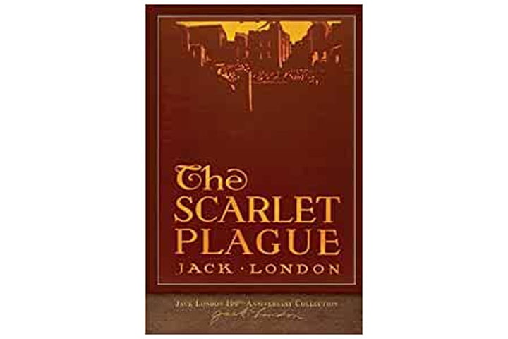 The book cover is a burgundy color with a yellow background, and we can see the outline of buildings, with the book title and author name in a yellow font