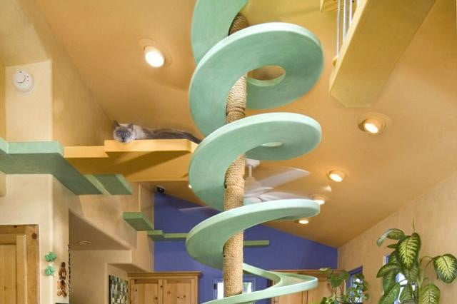 furniture and homes that are made for cat people trellium crazy house