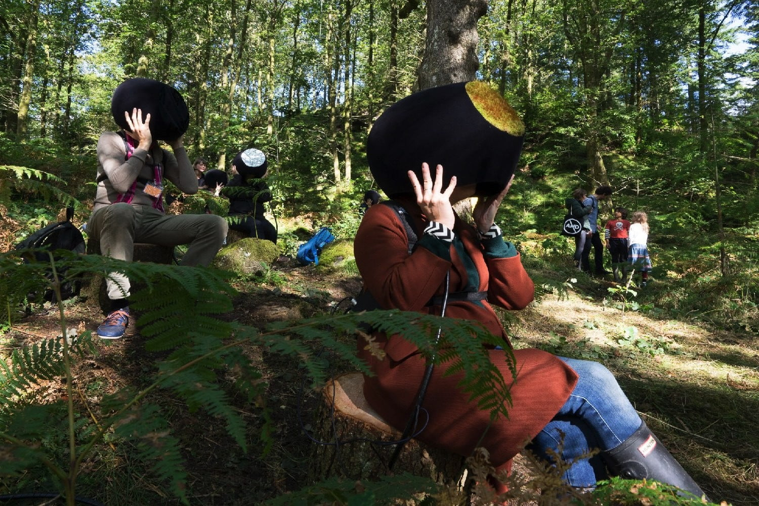 vr forest unspecified1
