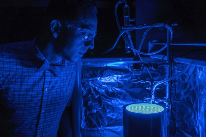 synthetic material clean air photosynthesis uribeblue