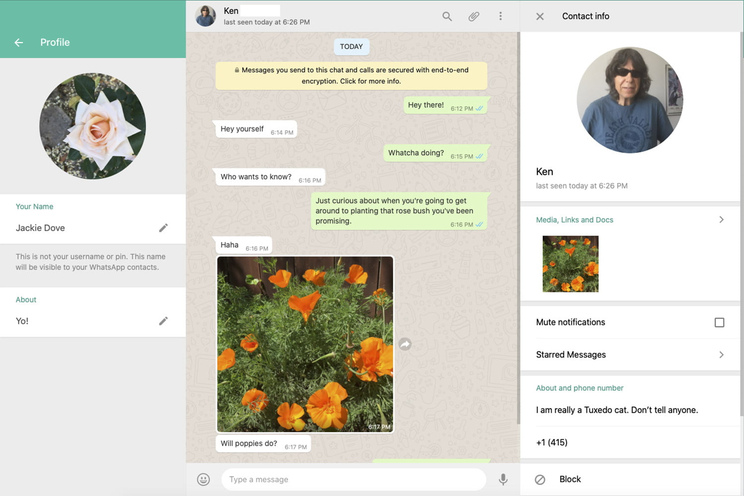 WhatsApp Web interface