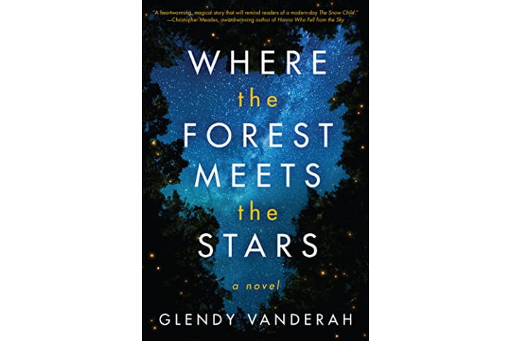 Where the Forest Meets the Stars by Glendy Vanderan.