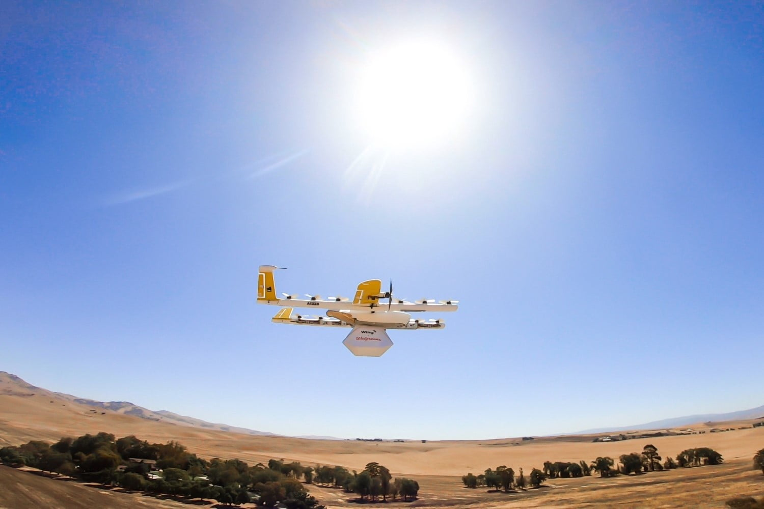 A Wing Delivery Drone